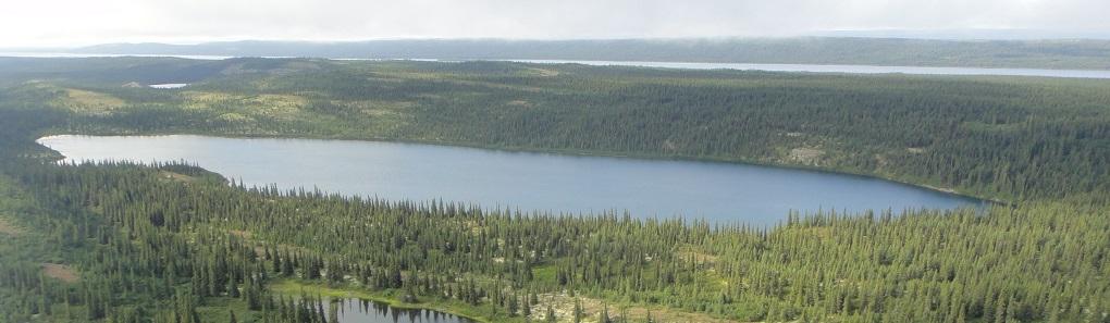 joyces lake